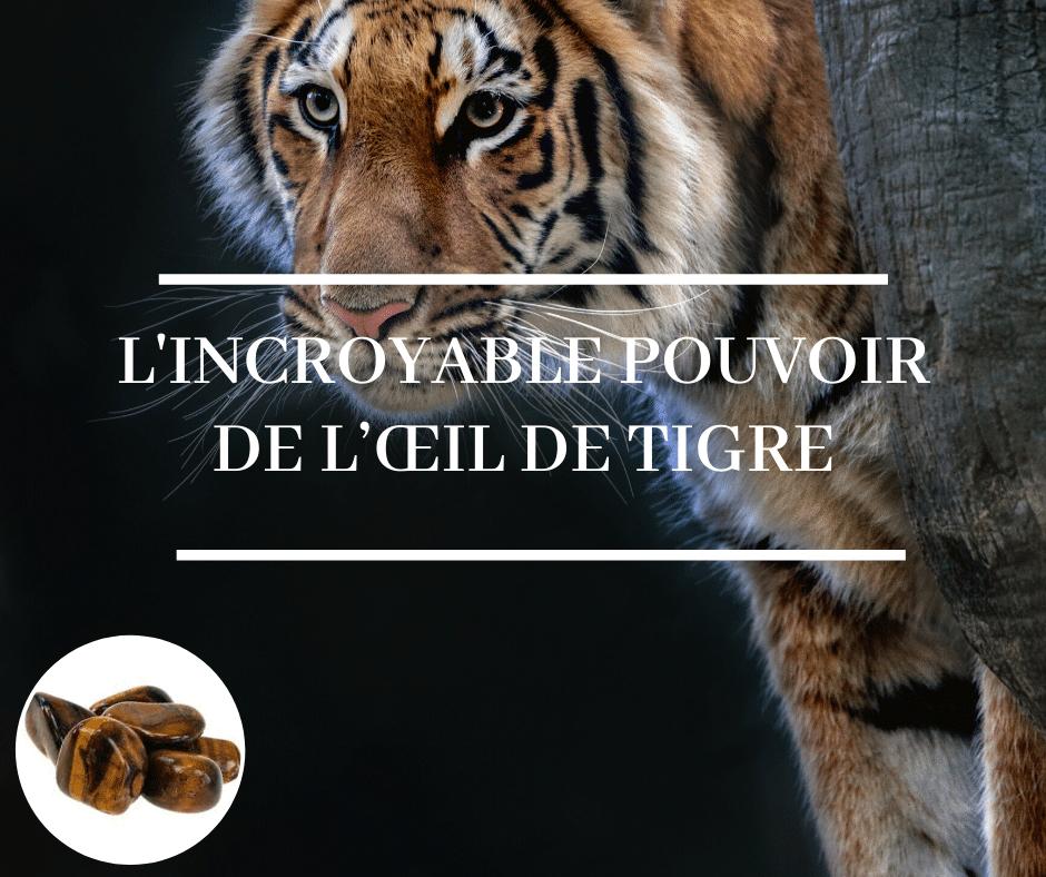 l'incroyable pouvoir de l'œil de tigre